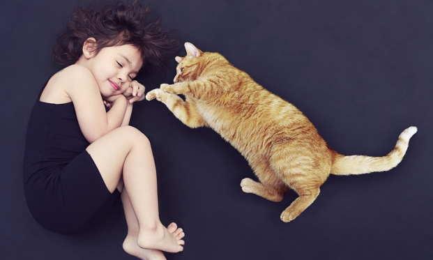 かわいい猫や犬のお世話をして収入をゲット
